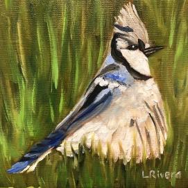 Bird 1, 6x6, oil
